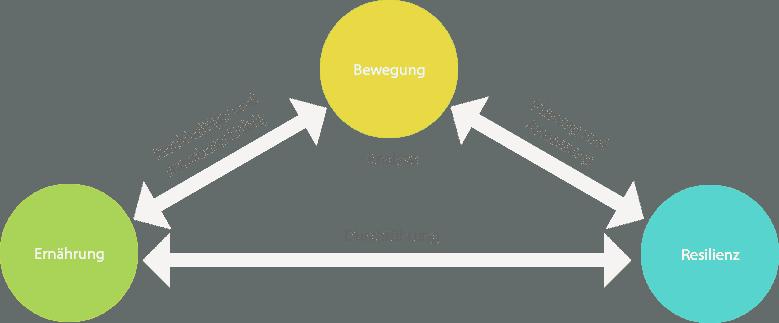 Personal Training im Unternehmen - Grafik